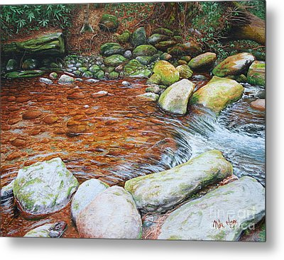 Rocky Stream Metal Print by Mike Ivey