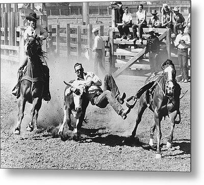 Rodeo Cowboy Bulldogging Metal Print