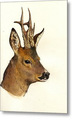 Roe Deer Head Study Metal Print by Juan  Bosco