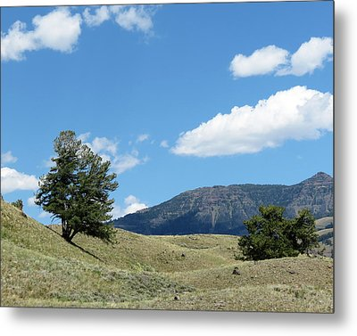 Metal Print featuring the photograph Rolling Hills by Laurel Powell
