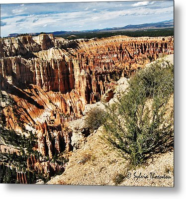 Rolling In The Deep Metal Print by Sylvia Thornton