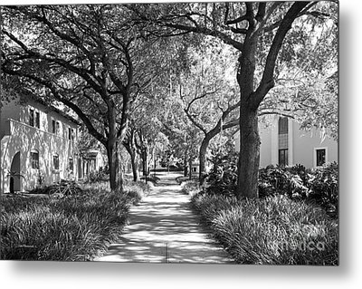 Rollins College Landscape Metal Print by University Icons