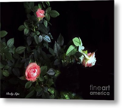 Romance Of The Roses Metal Print by Becky Lupe