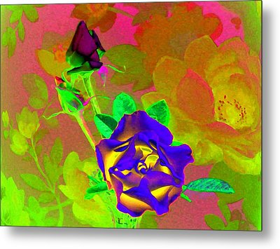 Romancing The Rose Metal Print by Will Borden