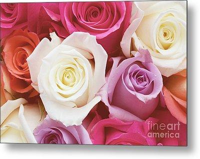 Romantic Rose Garden Metal Print by Kim Fearheiley