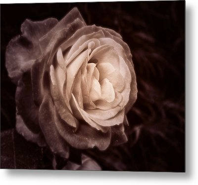 Romantica Metal Print by Mary Zeman