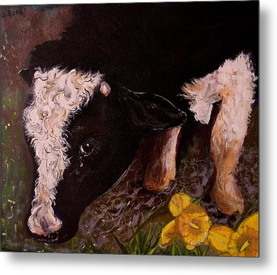 Ron The Bull Metal Print by Maria  Disley