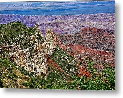 Roosevelt Point Two On North Rim/grand Canyon National Park-arizona   Metal Print by Ruth Hager