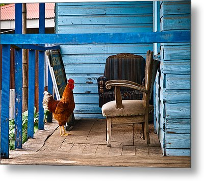 Rooster On Porch  Metal Print by Robert Watcher