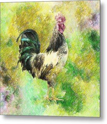 Rooster Metal Print by Taylan Apukovska