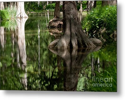 Roots Metal Print by Barbara Shallue