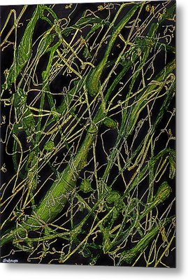 Roots Metal Print by Shabnam Nassir