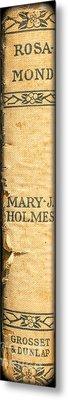 Rosamond By Mary J. Holmes Metal Print