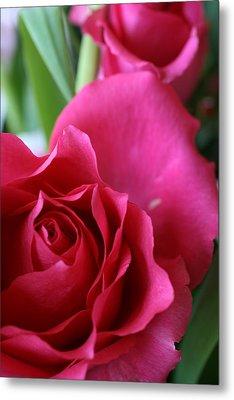 Rose 10 Metal Print