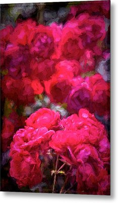 Rose 134 Metal Print by Pamela Cooper