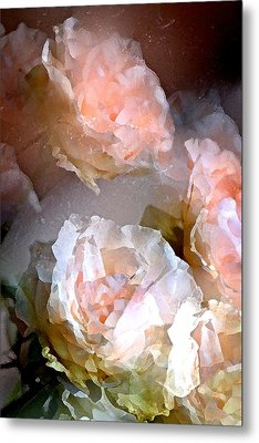 Rose 154 Metal Print by Pamela Cooper