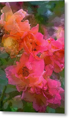 Rose 219 Metal Print by Pamela Cooper