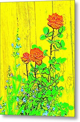 Rose 9 Metal Print by Pamela Cooper