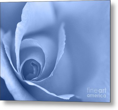 Rose Close Up - Blue Metal Print by Natalie Kinnear