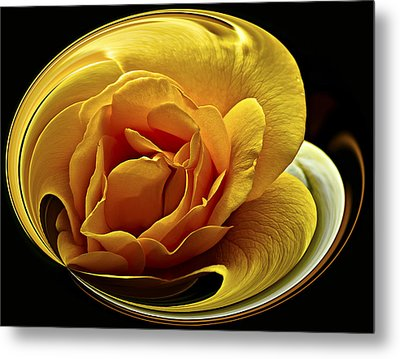 Rose Cup Metal Print by Gary Neiss