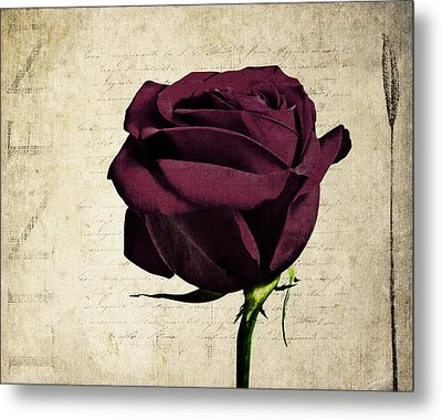 Rose En Variation - S11bt10b Metal Print by Variance Collections
