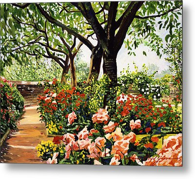 Rose Garden Impressions Metal Print by David Lloyd Glover