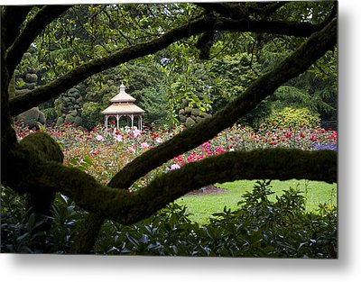 Metal Print featuring the photograph Rose Garden Window by Sonya Lang
