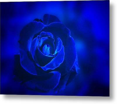 Rose In Blue Metal Print by Sandy Keeton