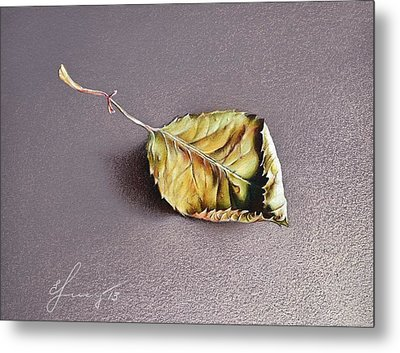 Rose Leaf Metal Print by Elena Kolotusha
