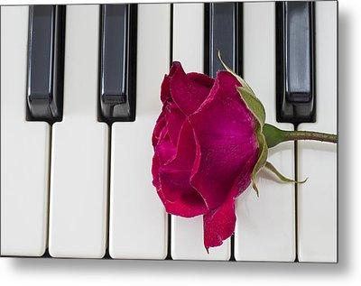 Rose Over Piano Keys Metal Print