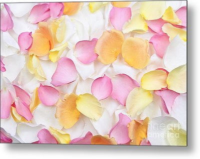 Rose Petals Background Metal Print by Elena Elisseeva