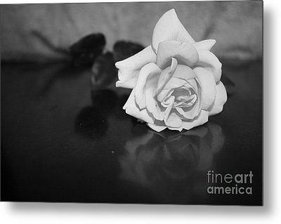 Rose Reflection Metal Print