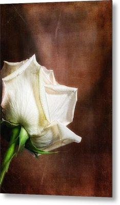 Rose - See Things Differently Metal Print by Tom Mc Nemar