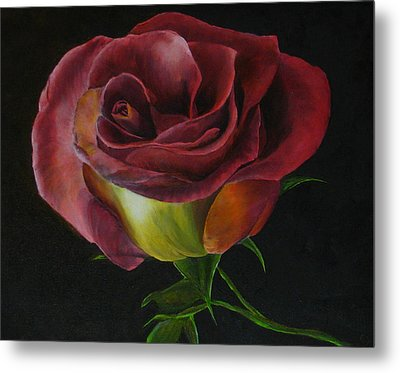 Rose Metal Print by Sherry Robinson