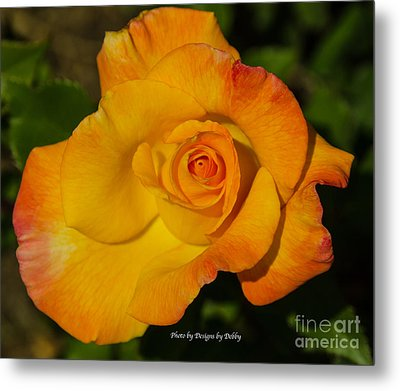 Metal Print featuring the photograph Rose Yellow Red by Debby Pueschel