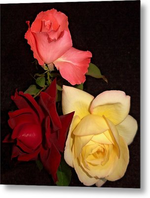 Roses 1 Metal Print