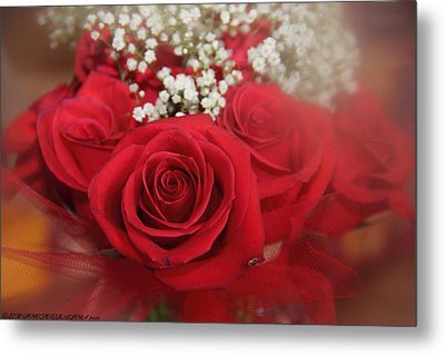 Metal Print featuring the photograph Roses Are Red by Elaine Malott