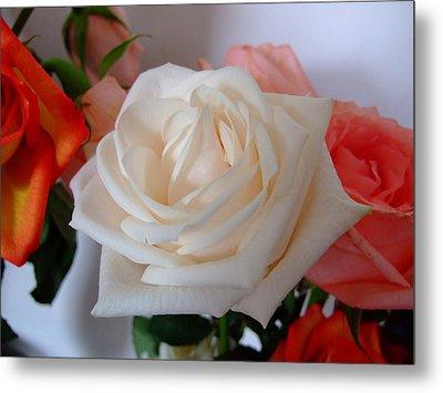 Roses Metal Print by Deborah DeLaBarre
