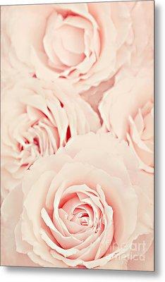 Roses Metal Print by Diana Kraleva