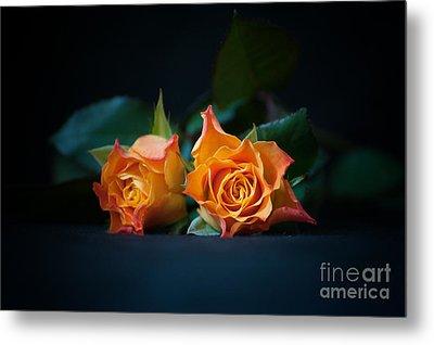 Roses Metal Print by Jaroslaw Oleksyk