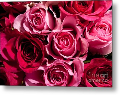 Metal Print featuring the photograph Roses by Matt Malloy