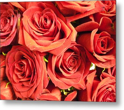 Roses On Your Wall Metal Print by Joseph Baril