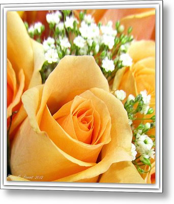 Roses Orange Blossoms Metal Print by Danielle  Parent