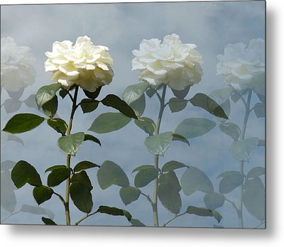 Roses Roses And More Roses Metal Print by Rosalie Scanlon