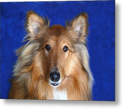 Metal Print featuring the photograph Rosie by Evelyn Tambour