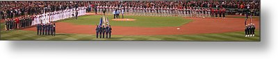 Rosters Metal Print by Stephen Melcher