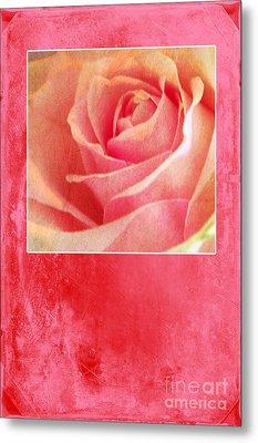 Rosy Metal Print by Randi Grace Nilsberg