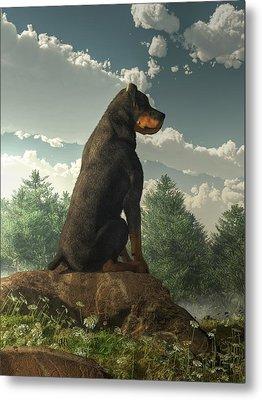 Rottweiler  Metal Print by Daniel Eskridge