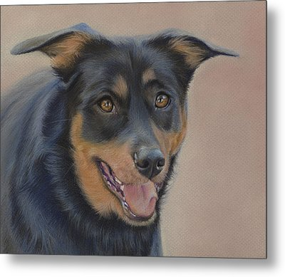 Metal Print featuring the painting Rottweiler - Drawing by Natasha Denger