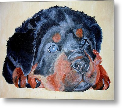Metal Print featuring the painting Rottweiler Puppy Portrait by Tracey Harrington-Simpson